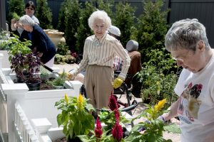 residents and patients of the mt. carmel rehabilitation and nursing center in manchester work in the healing garden
