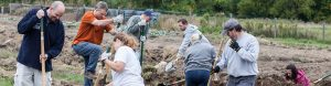 Volunteers assist at the NH Food Banks Production Garden. Catholic Charities grant recognition header.