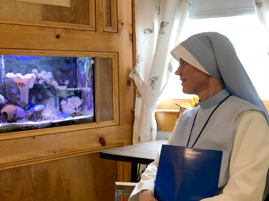 Administrator Sr. Mary Agnes looks at the aquarium at the St. Charles School in Rochester, NH.